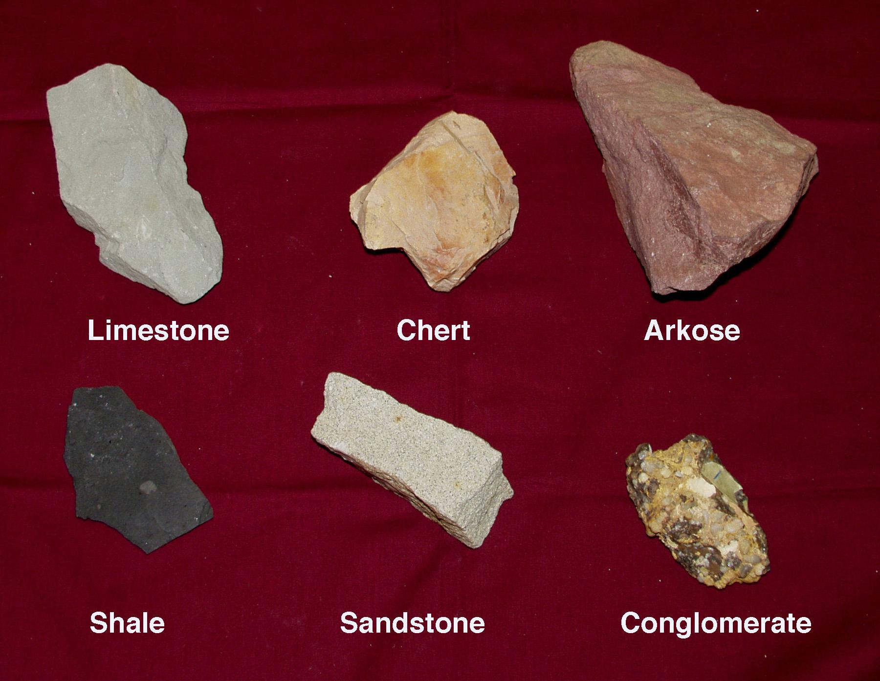 Different Types of Sedimentary Rocks